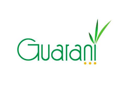 guarani.jpg