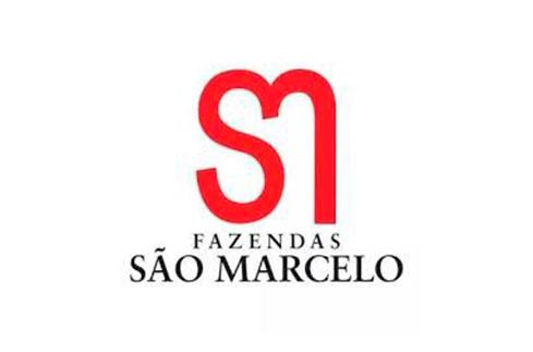 sao-marcelo